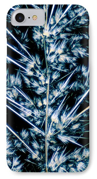 Lm Of Crystals Of Streptomycin IPhone Case by David Parker