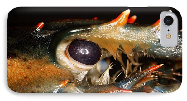 Lobster Eye Phone Case by Ted Kinsman