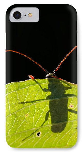 Locust Borer Phone Case by Mircea Costina Photography