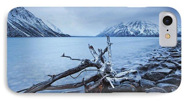 Log Along The Shores Of Kathleen Lake Phone Case by Robert Postma