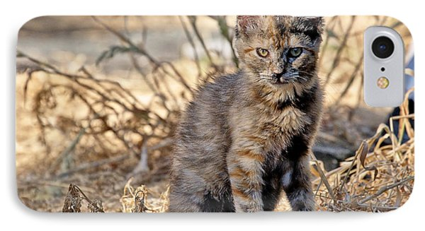 Lone Feral Kitten IPhone Case by Chriss Pagani