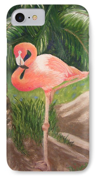 Lone Flamingo IPhone Case by Diane Ferguson