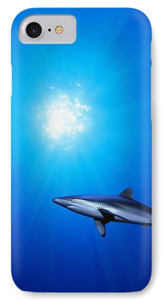 Lone Shark Illuminated By Underwater Phone Case by Carson Ganci
