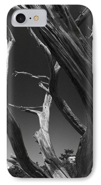 IPhone Case featuring the photograph Lone Tree by David Gleeson