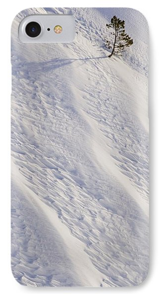Lone Tree On Mount Hood In Winter Mount Phone Case by Craig Tuttle