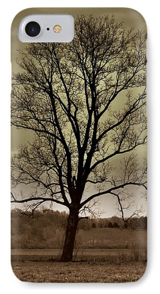 Lonely Tree Phone Case by Marty Koch