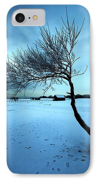 Lonely Winter Tree IPhone Case by Svetlana Sewell