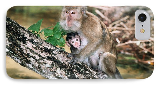 Long-tailed Macaque Mother And Baby Phone Case by Georgette Douwma