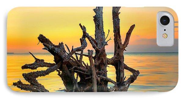 Longboat Key Tree Phone Case by Jenny Ellen Photography