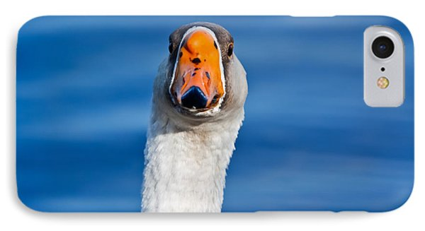 Looking Straight Ahead IPhone Case by Ann Murphy