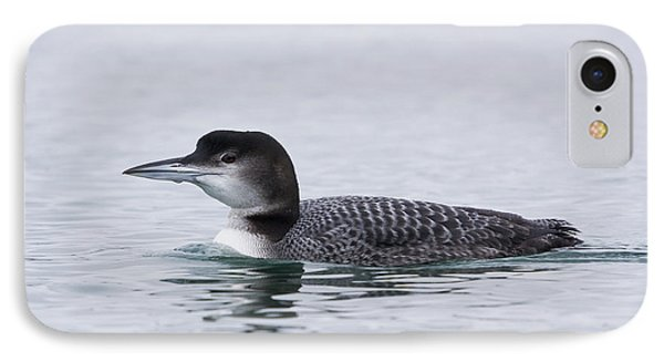 Loon IPhone Case by Bob Decker
