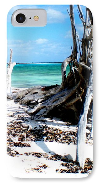 IPhone Case featuring the photograph Cozumel Mexico  Paradise On Earth by Danielle  Parent