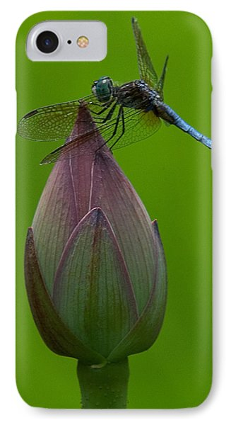 Lotus Bud And Blue Dasher Dragonfly Dl007 IPhone Case by Gerry Gantt