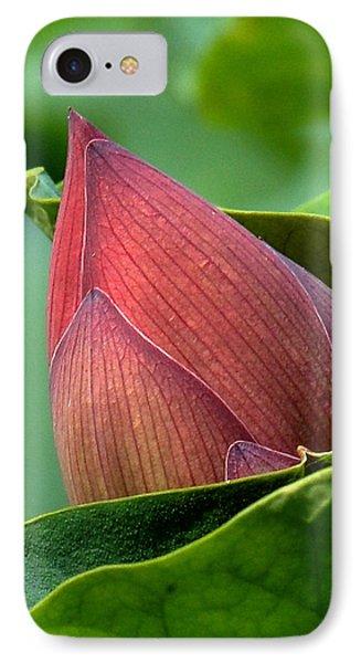 Lotus Bud--bud In A Blanket Dl049 IPhone Case by Gerry Gantt