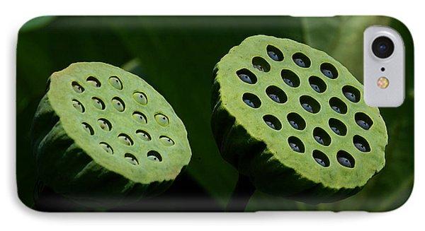 Lotus Capsules-sun Worshipers Dl052 Phone Case by Gerry Gantt