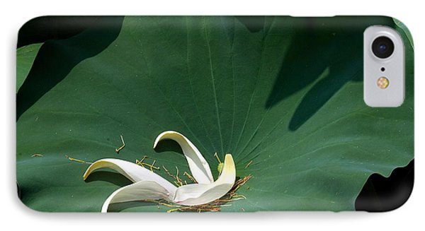 Lotus Leaf--castoff IIi Dl060 IPhone Case by Gerry Gantt