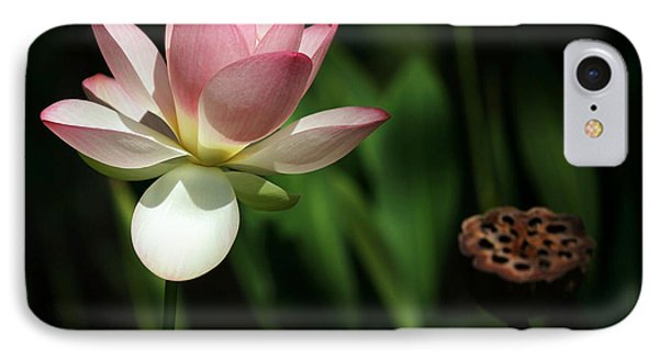 Lotus Opening To The Sun Phone Case by Sabrina L Ryan