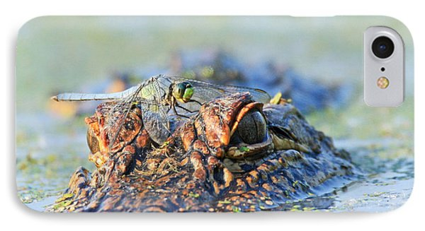 IPhone Case featuring the photograph Louisiana Alligator With Dragon Fly by Luana K Perez