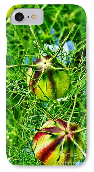 IPhone Case featuring the photograph Love In A Mist by Steve Taylor