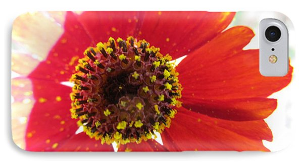 IPhone Case featuring the photograph Lovely Effects by Tina M Wenger