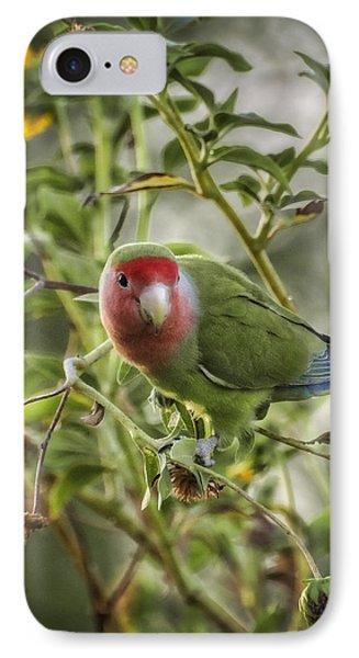 Lovely Little Lovebird IPhone 7 Case