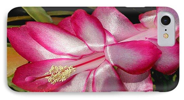 Luminous Cactus Flower Phone Case by Kaye Menner