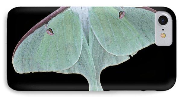 Luna Moth Phone Case by Paul Ward