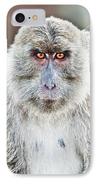 Macaque Portrait Phone Case by MotHaiBaPhoto Prints
