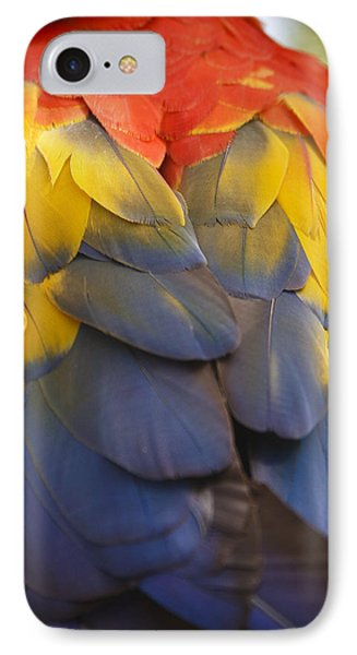 Macaw Parrot Plumes IPhone Case by Adam Romanowicz