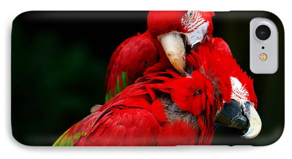 Macaws Phone Case by Paul Ge