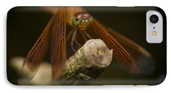 Macro Photograph Of A Dragonfly On A Twig Phone Case by Zoe Ferrie