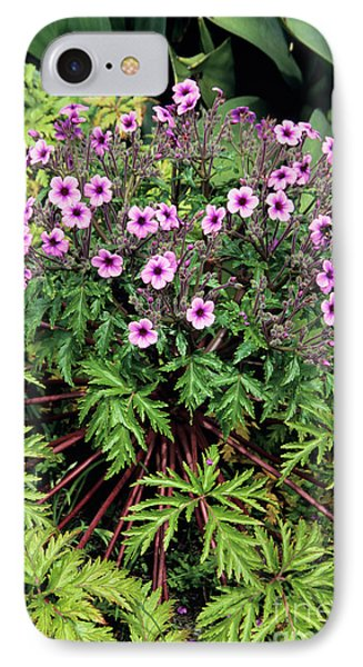 Madeiran Cranesbill Phone Case by Adrian Thomas