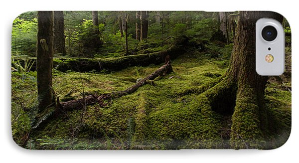 Magical Forest Phone Case by Mike Reid