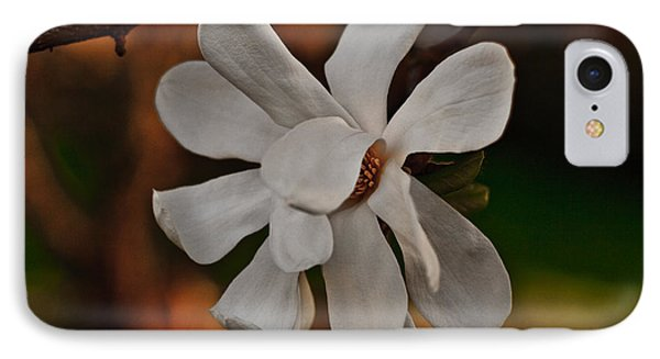 IPhone Case featuring the photograph Magnolia Bloom by Barbara McMahon