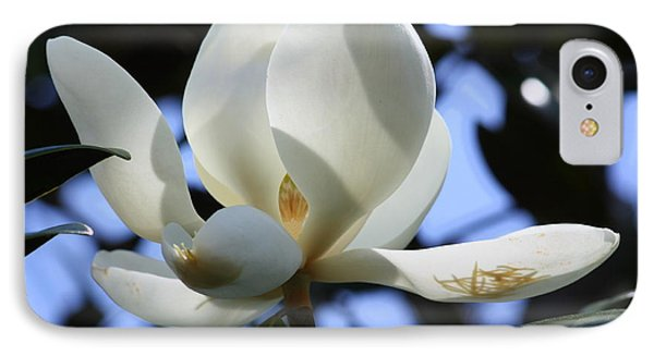 Magnolia In Blue Phone Case by Carol Groenen