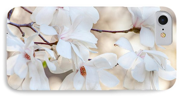 IPhone Case featuring the photograph Magnolia Spring by Susan Cole Kelly