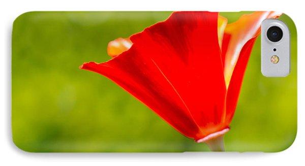 Mahogany California Poppy I Phone Case by Heidi Smith
