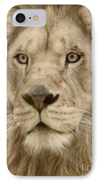 Majestic Lion Phone Case by Megan Wilson