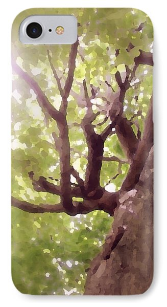 IPhone Case featuring the photograph Majestic Maple by Brooke T Ryan