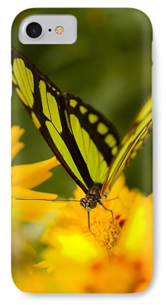 Malachite Butterfly On Flower Phone Case by Craig Tuttle