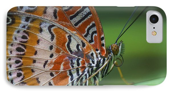 Malay Lacewing Butterfly Phone Case by Zoe Ferrie