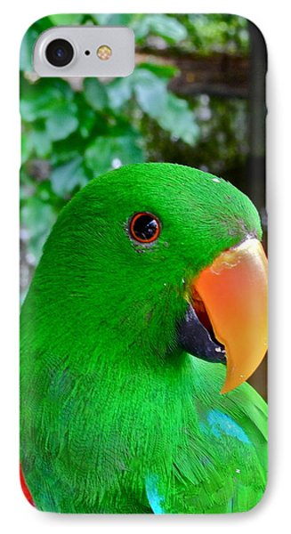 Male Eclectus Parrot II IPhone Case by Kirsten Giving