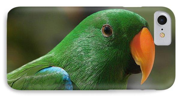 Male Eclectus Parrot IPhone Case