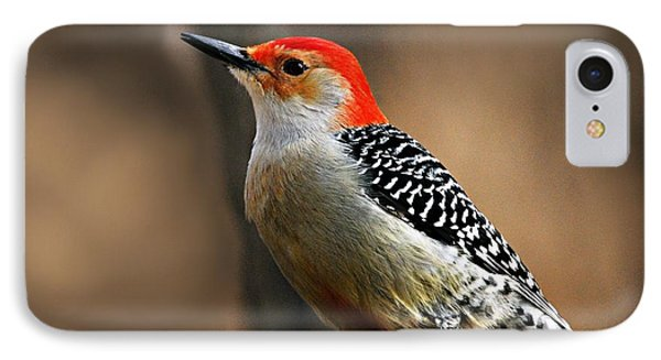 Male Red-bellied Woodpecker 4 Phone Case by Larry Ricker