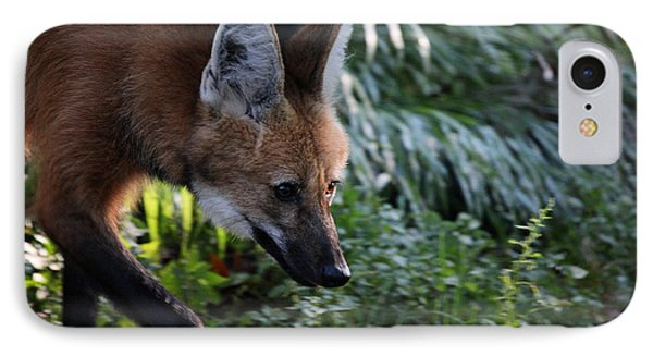 Maned Wolf Phone Case by Karol Livote