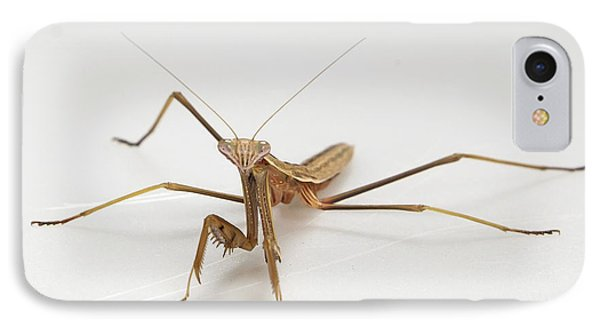 IPhone Case featuring the photograph Mantis 1 by John Crothers