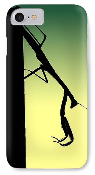 Mantis IPhone Case