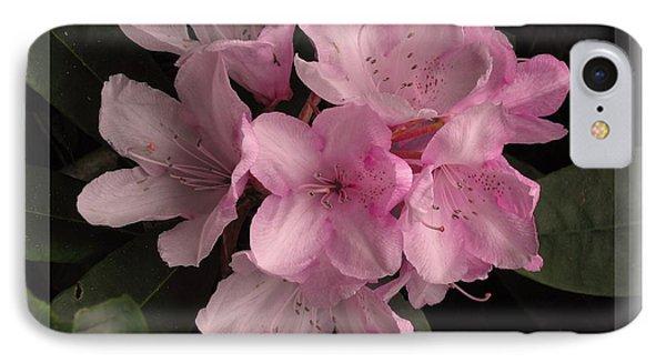 Many Splendored Blooms Phone Case by Judee Stalmack