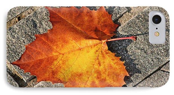 Maple Leaf In Fall Phone Case by Carolyn Marshall