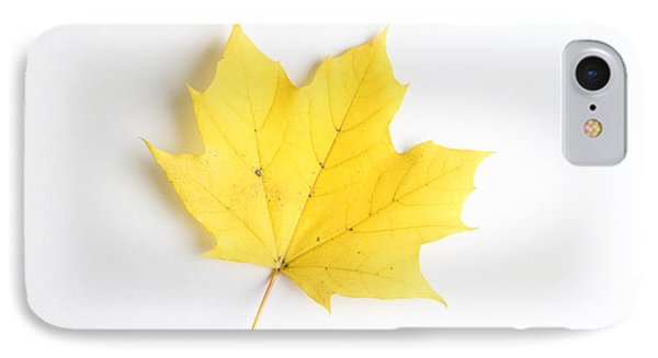 Maple Leaf Phone Case by Photo Researchers